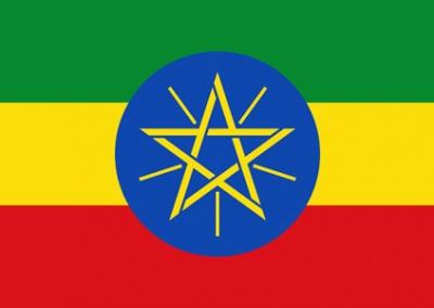 Amharinja v3