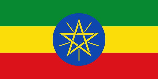 Amharinja v8