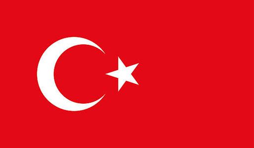 Turkiska v20