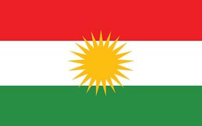 Kurdiska v49